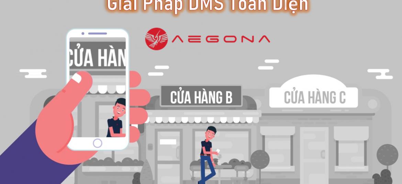 giai-phap-DMS-toan-dien